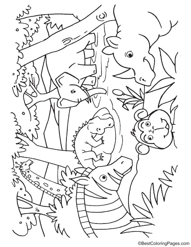 612x792 Animals Drinking Water Coloring Page Download Free Animals