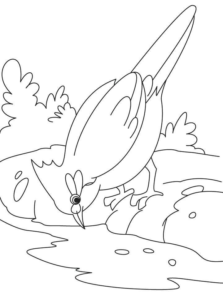 720x954 Water Coloring Pages Water Cycle Coloring Page Water Coloring
