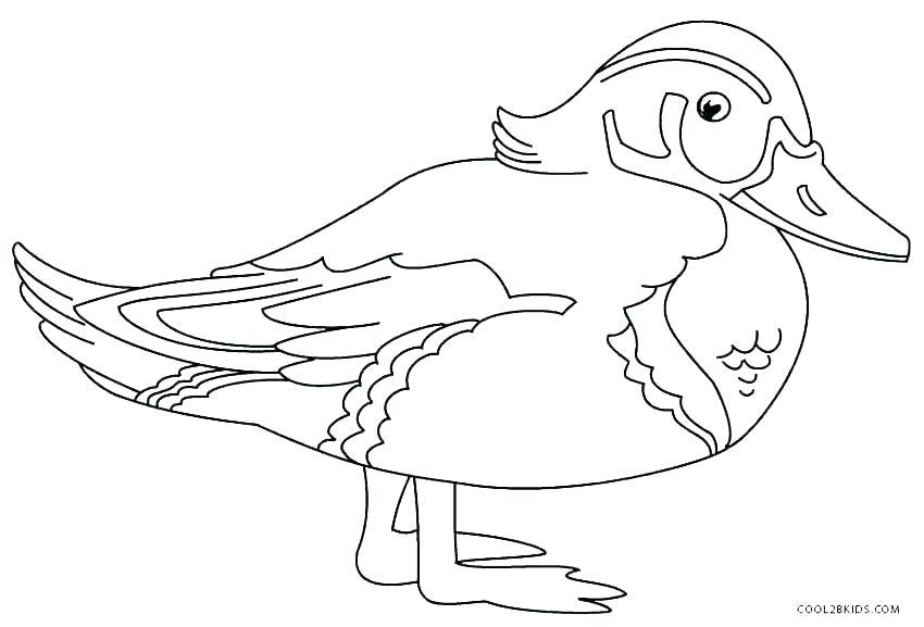 850x577 Duckling Coloring Page Duckling Coloring Page Duck Duckling