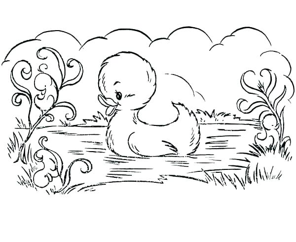 600x490 Coloring Pages Duck Daffy Duck Coloring Pages To Print