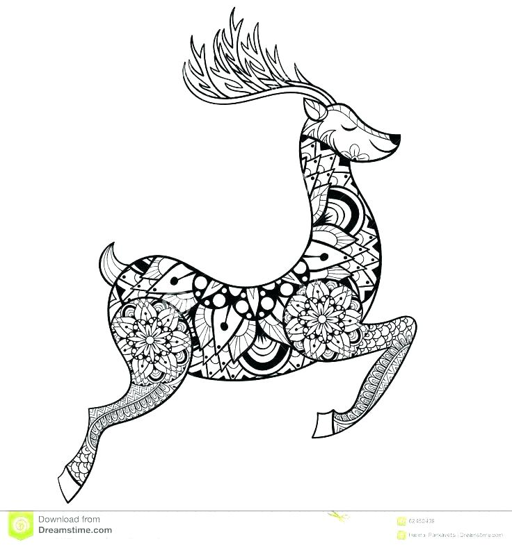 736x786 Deer Hunting Coloring Pages Duck Hunting Coloring Pages Hunter