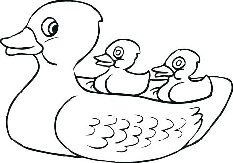 476x333 Coloring Pages Duck Duck Coloring Pages Download And Print Duck