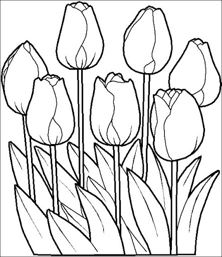 Dutch Coloring Pages