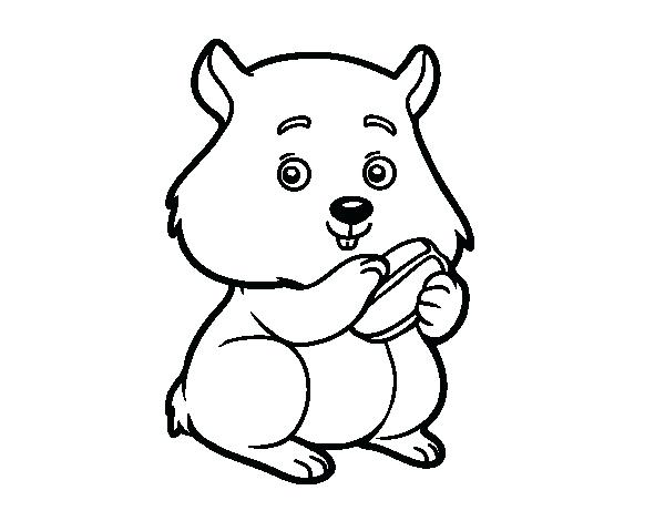 600x470 Hamster Coloring Page Chubby Hamster Coloring Page Dwarf Hamster