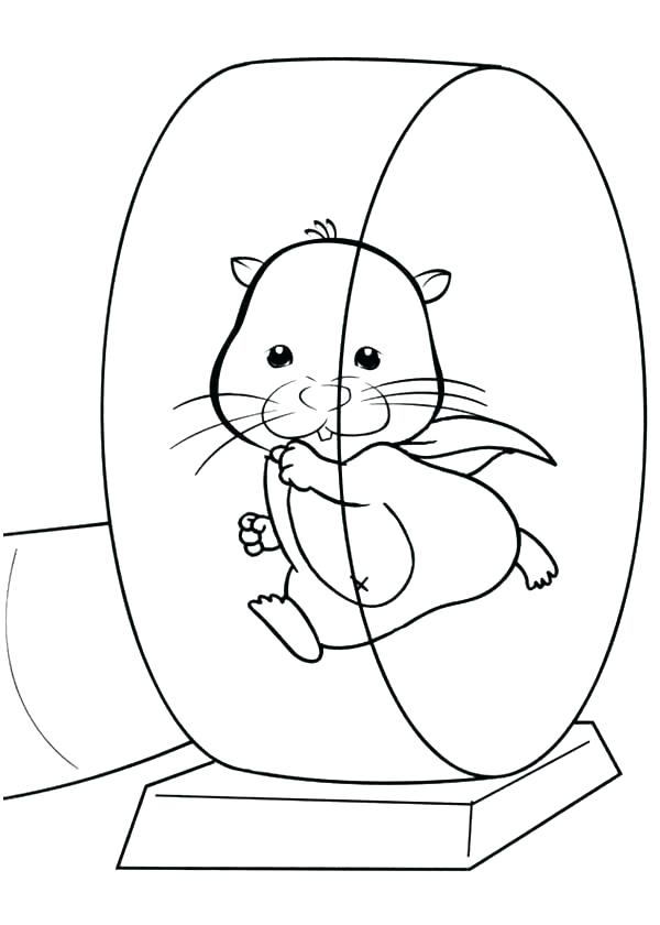 Dwarf Hamster Coloring Pages at GetDrawings.com | Free for personal ...