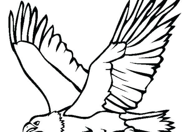 600x425 Eagle Coloring Page Great Flying Bald Eagle Coloring Page Harpy