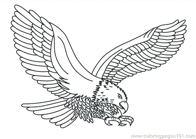650x461 Philadelphia Eagles Coloring Pages Printable Eagle Best Images