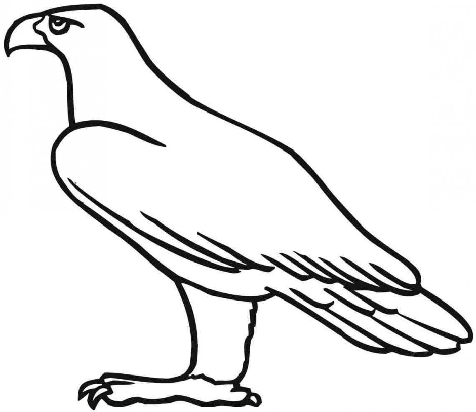 940x813 Simple Eagle Standing Coloring Page Eagle Coloring Pages