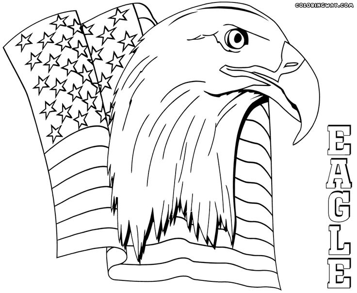 736x604 Best Eagle Coloring Pages Images On Adult Coloring