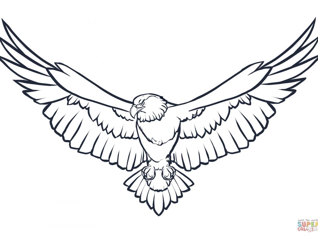 1080x800 Free Eagle Head Coloring Page Realistic Printable Animals Mandala