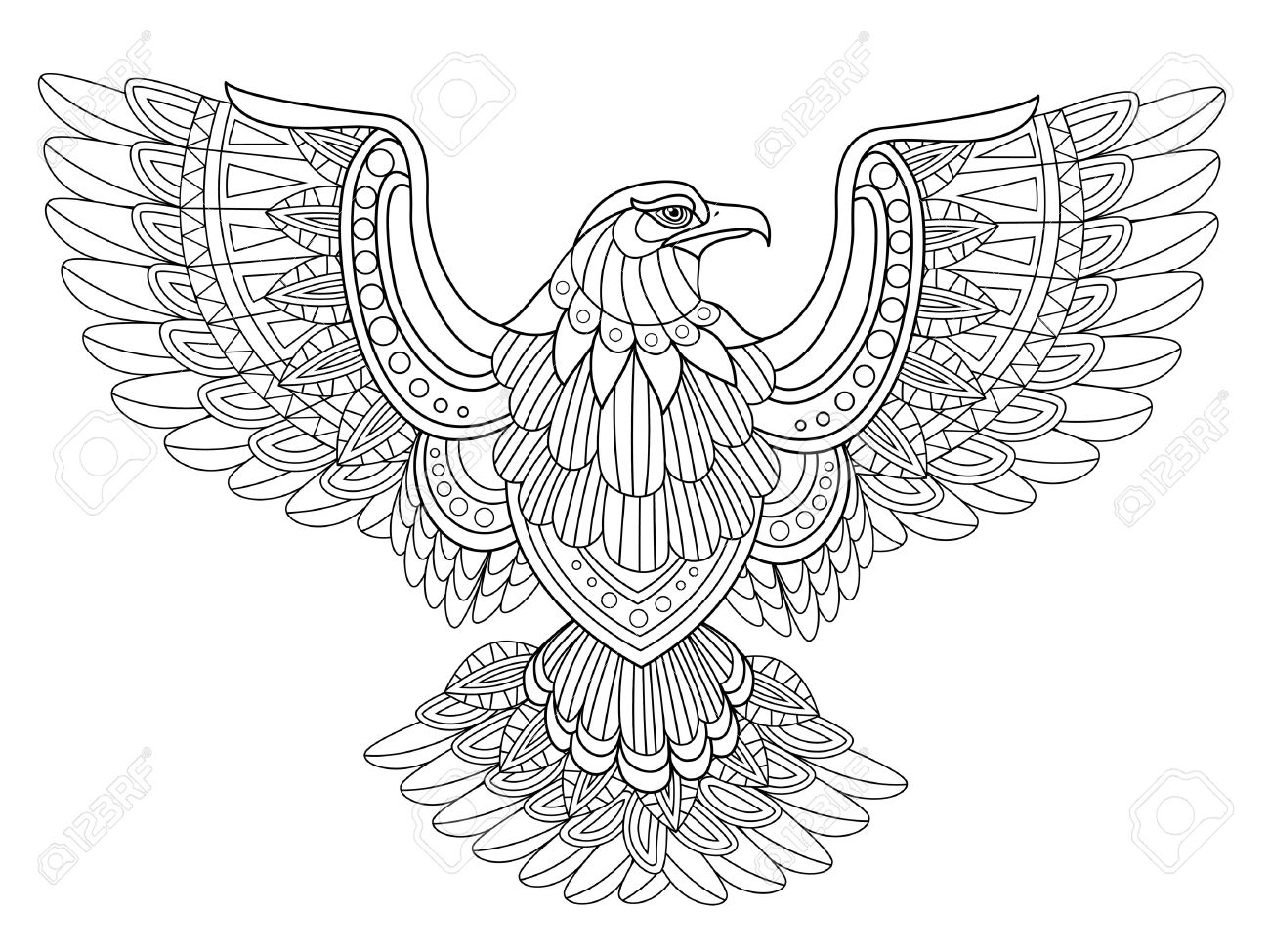 1300x975 Harpy Eagle Coloring Page Printable Pages Click The To View