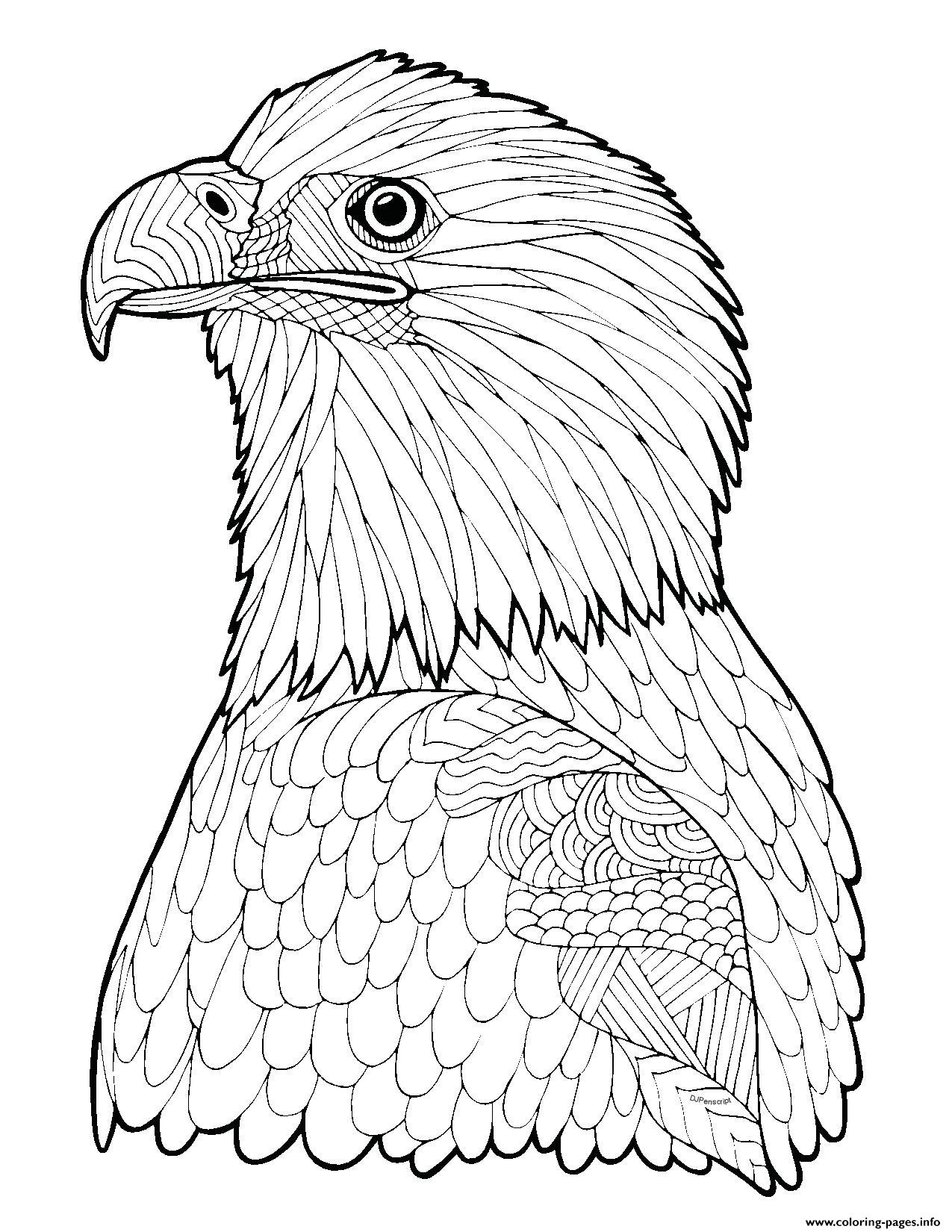 1275x1650 Bald Eagle Zentangle Page Adult Hard Advanced Coloring Pages Printable