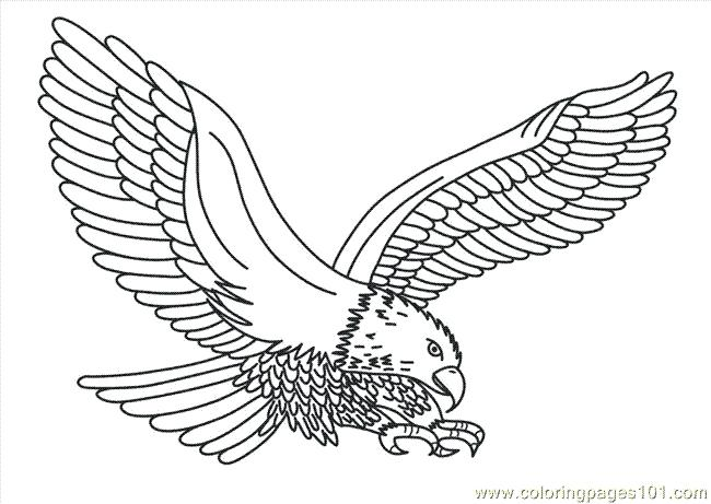 650x461 Coloring Pages Eagle Eagle Printable Coloring Pages Best Eagle