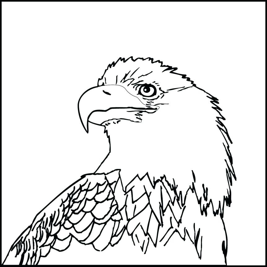 863x863 Eagle Head Coloring Page Eagle Coloring Page Bald Eagle Head