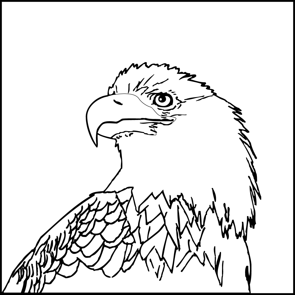 1200x1200 Eagle Printable Coloring Pages With Usa Flag Birds Bald Animals