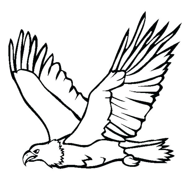 600x610 Philadelphia Eagles Coloring Pages Eagles Coloring Pages Eagles