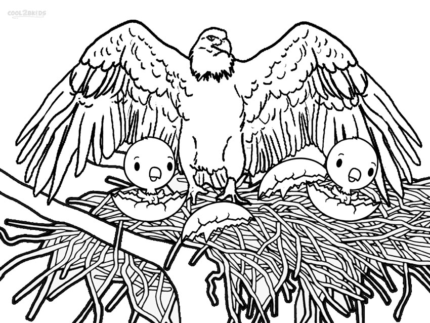 850x638 Eagle Printable Coloring Pages Printable Bald Eagle Coloring Pages