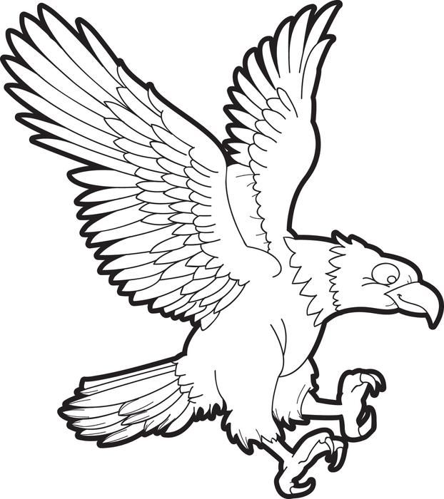 622x700 Bald Eagle Coloring Page Bald Eagle And Free Printable