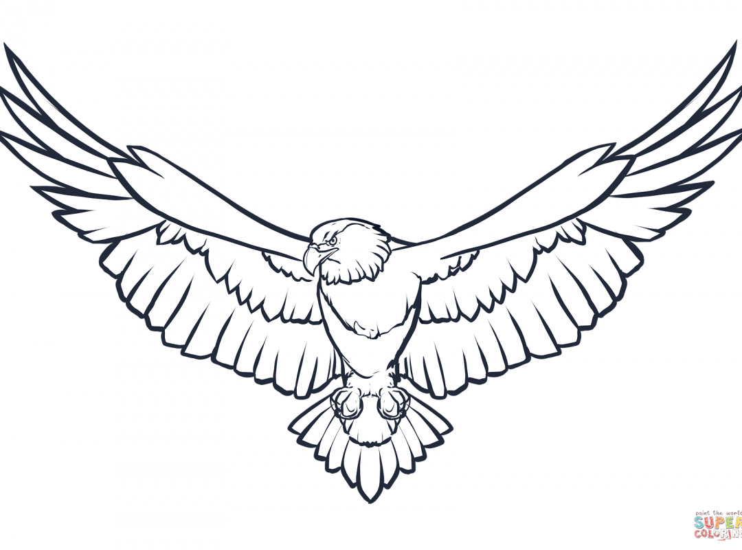 1080x800 Eagle Coloring Pages Flying American Page Printable Harpy