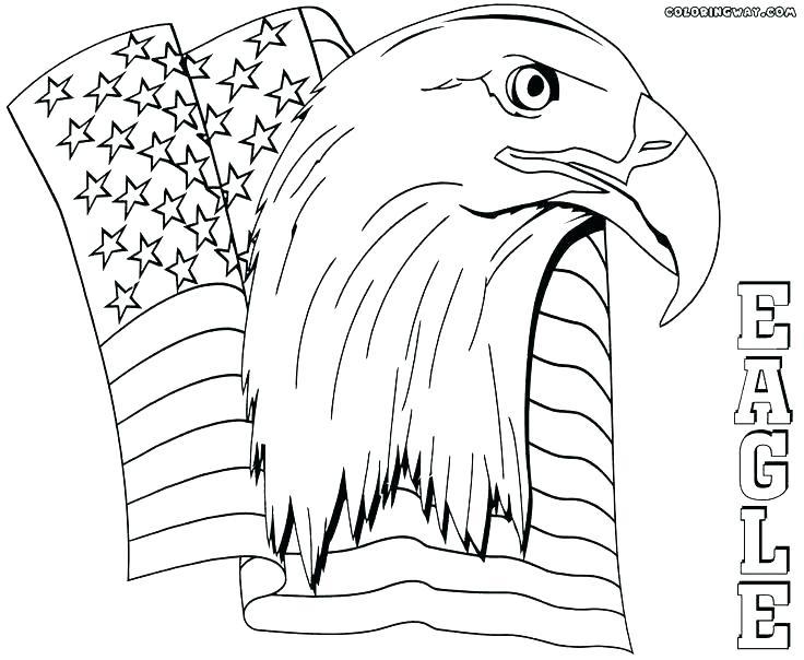 736x604 Harpy Eagle Coloring Page Harpy Eagle Coloring Page Bald Eagle
