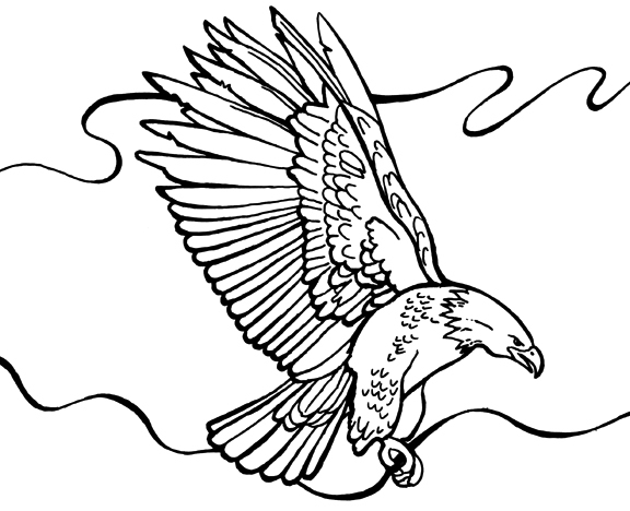576x468 Bald Eagle Coloring Page
