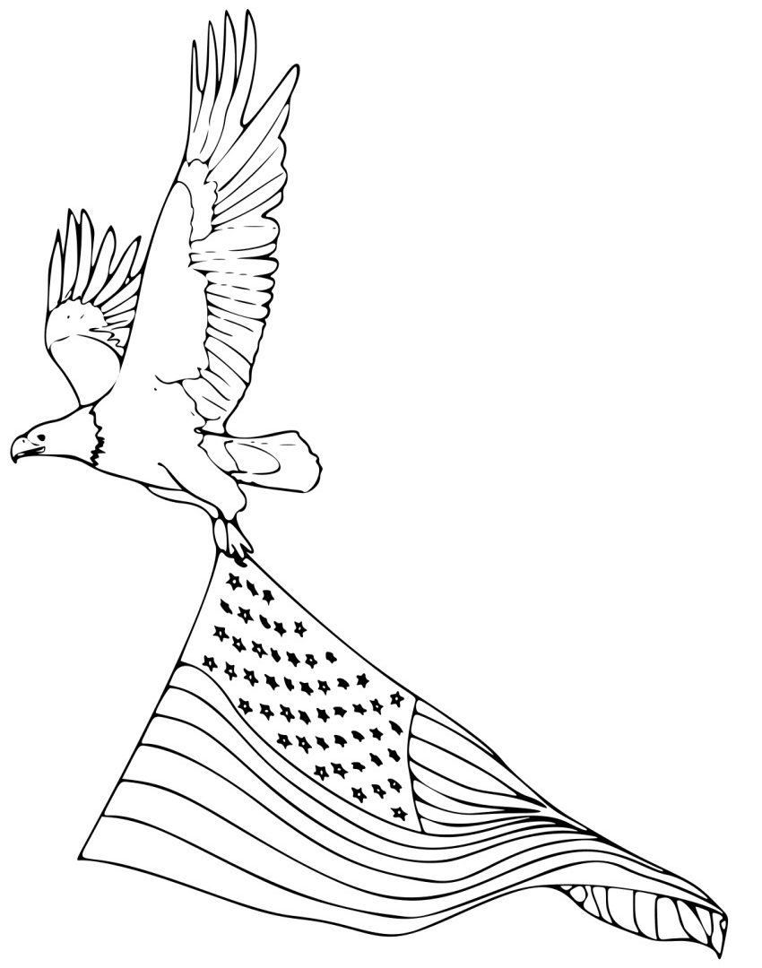 850x1080 Coloring Pages For Kids Birds Bald Eagle Printable Animals Free