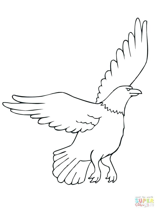 618x824 Eagle Pictures To Color Click The Eagle Coloring Pages Marvellous
