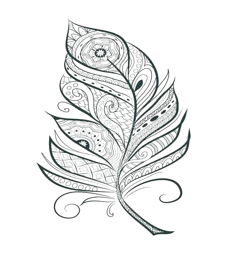 800x889 Feather Coloring Page Stylized Feather Coloring Page Hand Stock