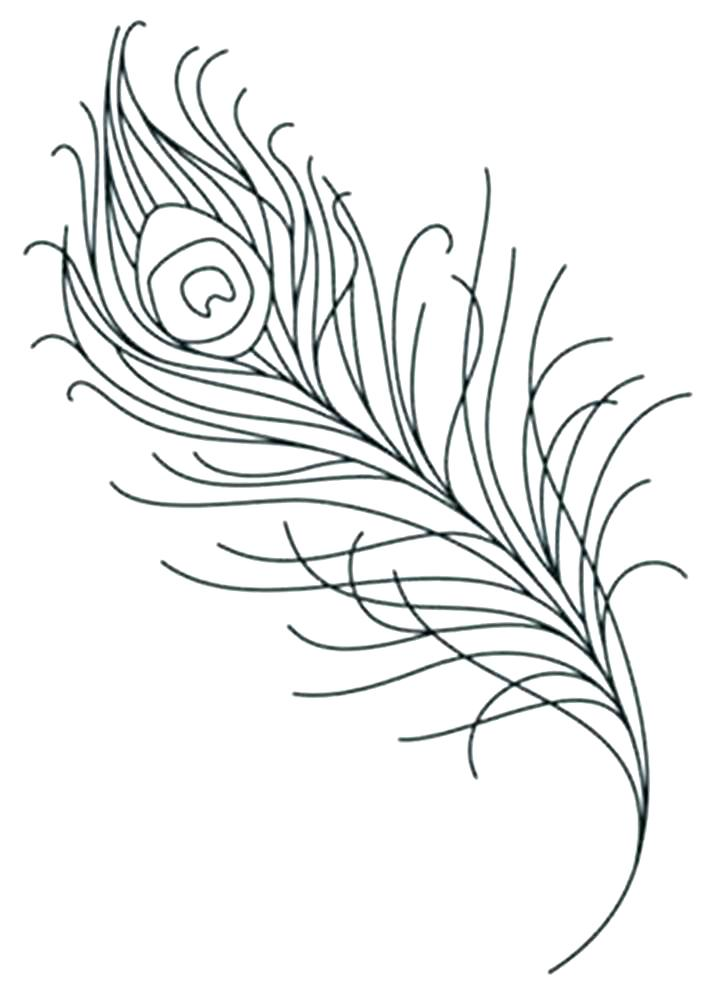 716x998 Feather Coloring Pages Free Printable Turkey Coloring Pages Free