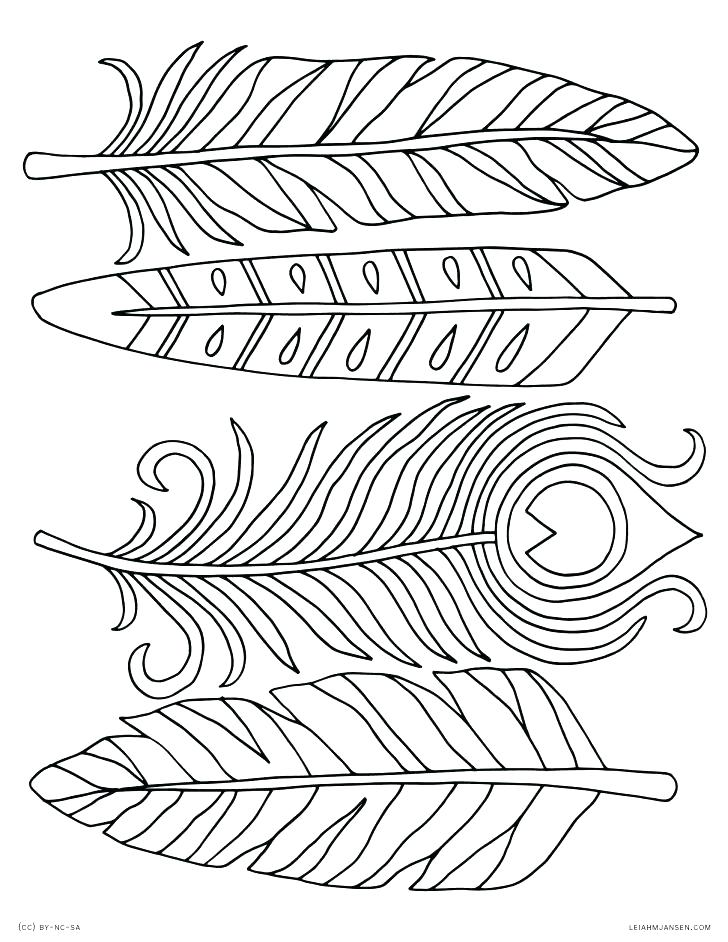 728x942 Feather Coloring Pages Peacock Feather Coloring Page Coloring
