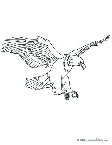 364x470 Coloring Pages Of Eagles Eagle Printable Eagle Printable Coloring