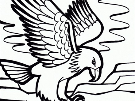 440x330 Eagle Coloring Pages, How To Draw A Bald Eagle Step