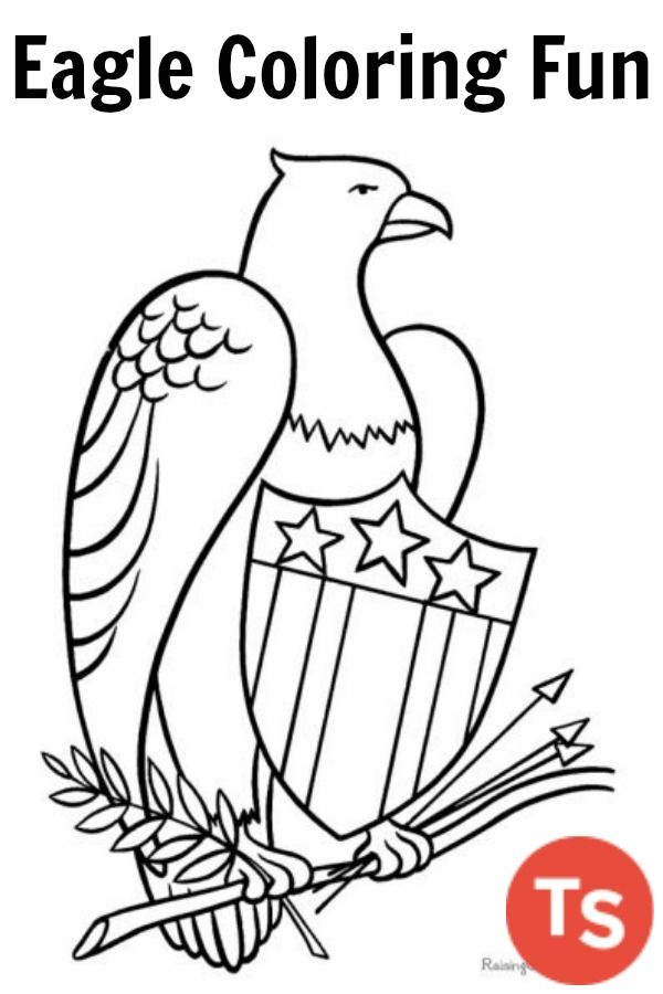 600x900 Ready To Print Eagle Coloring Pages For Kids This Fun Theme Is
