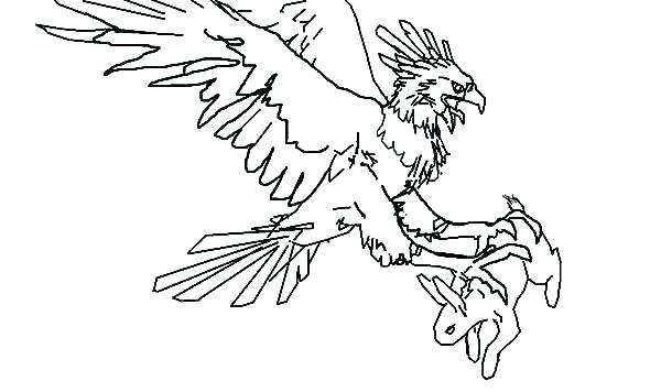 600x356 Coloring Pages Of Eagles Deepart