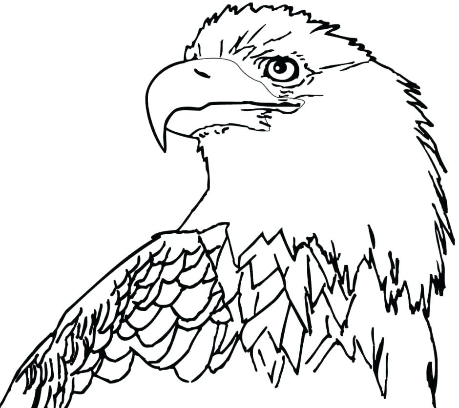 940x836 Eagle Printable Coloring Pages Professional