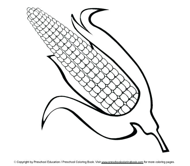660x577 Ear Coloring Sheets Ear Coloring Page Ear Pictures To Color