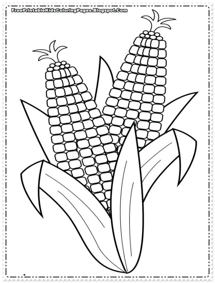 ear of corn coloring page 22