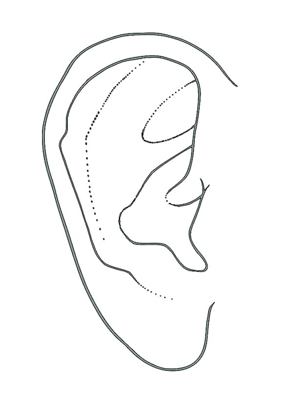 600x848 Coloring Ear Coloring Ear Ears Coloring Page Ears Coloring Pages