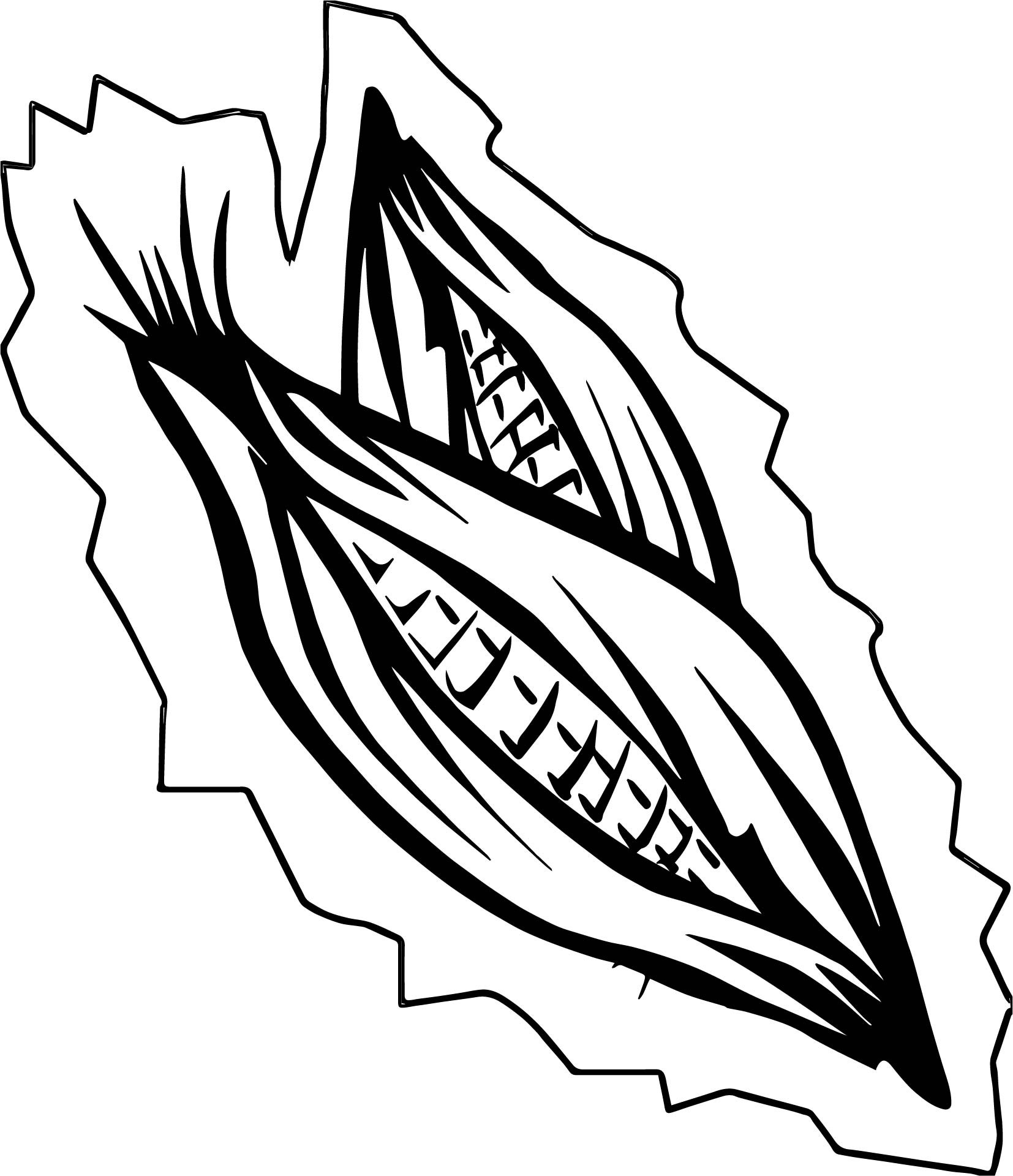 1654x1920 Corn Coloring Pages Excellent Impressive Clip Art Ear Of Page