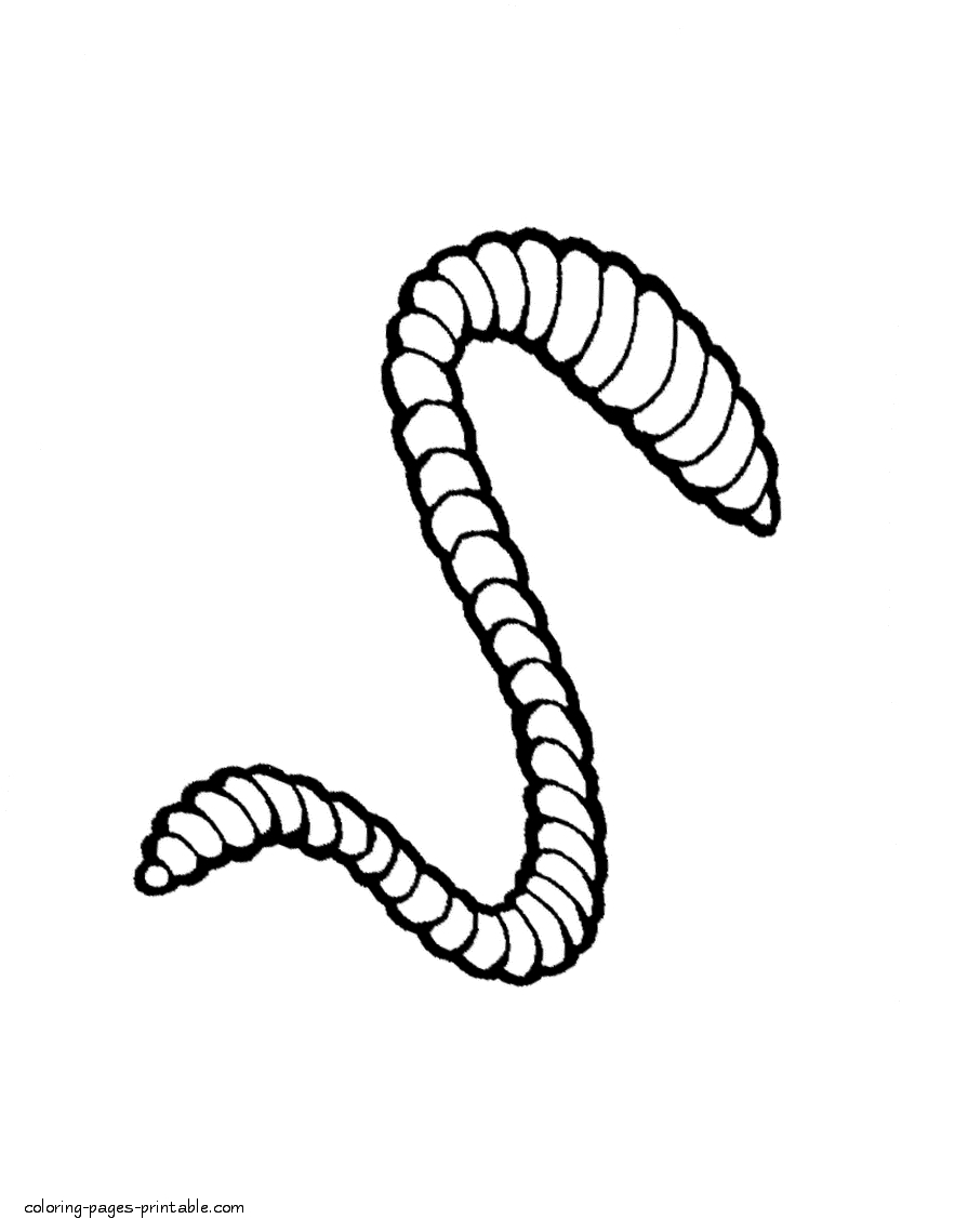 895x1139 Worm Coloring Pages Download
