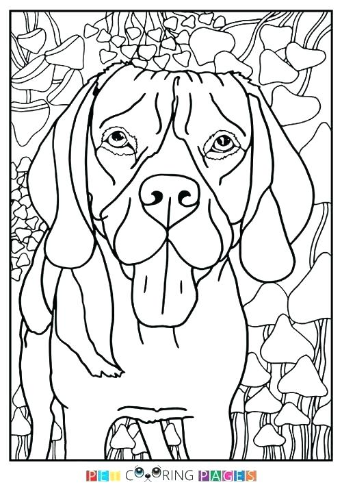 500x711 Beagle Coloring Pages Coloring Pages With Dogs Coloring Pages Dogs