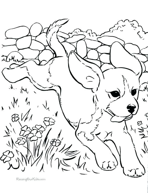 563x732 Beagle Coloring Pages Dog Cartoon For Coloring Book Royalty Free
