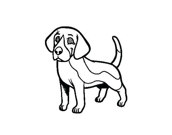 600x470 Beagle Coloring Pages Dog Head Coloring Page Easter Beagle