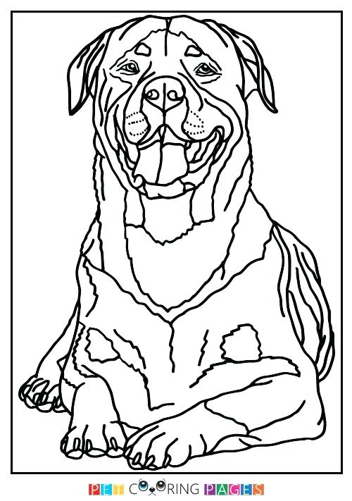 500x711 Beagle Coloring Pages Rottweiler Animal Coloring Pages Beagle