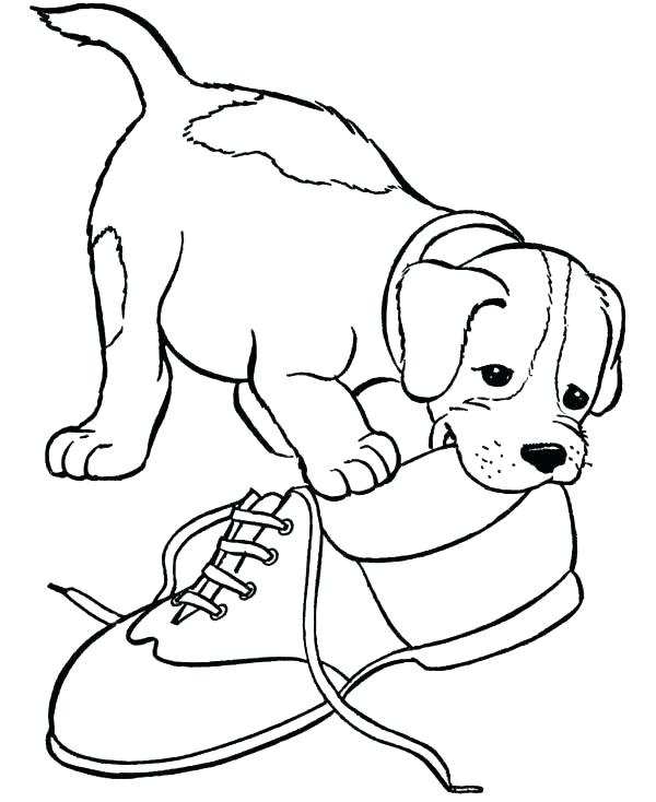 600x734 Beagle Coloring Pages
