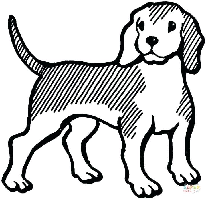 720x697 Beagle Coloring Pages Beagle Free Printable Beagle Coloring Pages