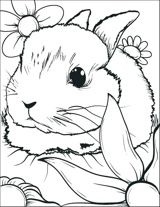 543x700 Free Printable Easter Bunny Coloring Sheets Kids Coloring Bunny