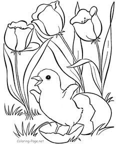 236x288 Coloring Pages Kids