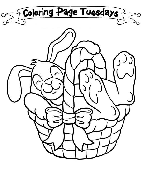 600x776 A Sleepy Bunny Inside The Easter Basket Coloring Page