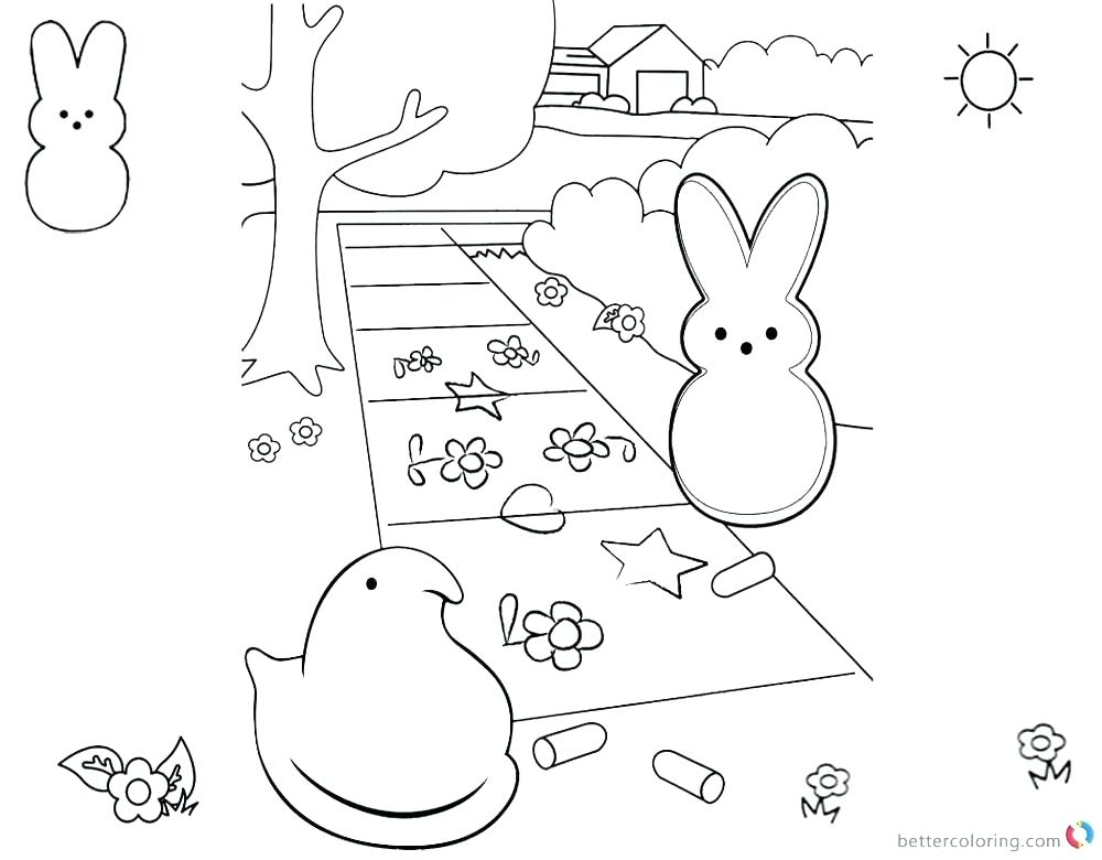 The Best Free Peep Coloring Page Images Download From 38 Free